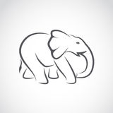 Vector image of an elephant Stock Photography