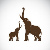 Vector image of an elephant vector illustration