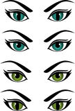 Vector image of the eyes. Of different colors and shapes Royalty Free Stock Photography