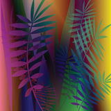 Vector image with fern leaves Royalty Free Stock Image