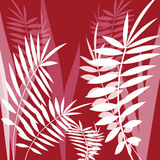 Vector image with fern leaves Royalty Free Stock Photo