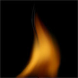 Vector image of fire Royalty Free Stock Photos