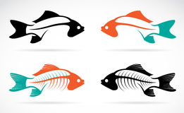 Vector image of an fish bones Royalty Free Stock Photos