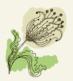 Vector image of a flower in vintage style Stock Photography