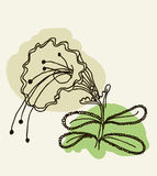 Vector image of a flower in vintage style Stock Images