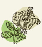 Vector image of a flower in vintage style Royalty Free Stock Photo
