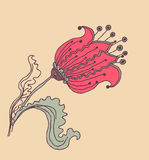 Vector image of a flower in vintage style Stock Photos