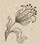 Vector image of a flower in vintage style Stock Photo