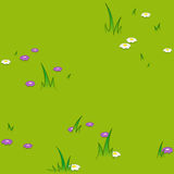 Vector image of flowers blooming on field Royalty Free Stock Image