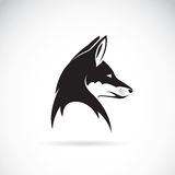Vector image of an fox head Royalty Free Stock Photo