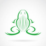 Vector image of a frog design Royalty Free Stock Image