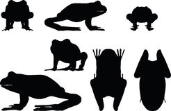Vector Image - frog silhouette  on white background Stock Photos