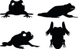 Vector Image - frog silhouette  on white background Stock Images