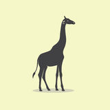 Vector image of an giraffe design. Stock Photography