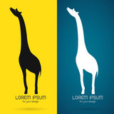 Vector image of an giraffe design Stock Images