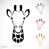 Vector image of an giraffe head Stock Photos