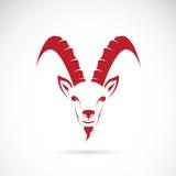 Vector image of goat (chamois). On white background stock illustration