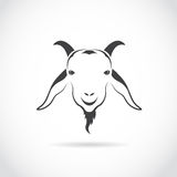Vector image of an goat head Royalty Free Stock Image