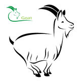 Vector image of an goat Royalty Free Stock Images