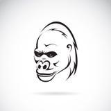 Vector image of an gorilla head Stock Photos
