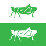 Vector image of an grasshopper design Royalty Free Stock Images