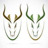 Vector image of an head impala. And horns Royalty Free Stock Photos