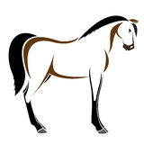 Vector image of an horse Stock Photos