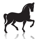 Vector image of an horse Stock Photo