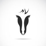 Vector image of an horse face Royalty Free Stock Photography