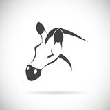 Vector image of an horse head Royalty Free Stock Photo