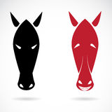 Vector image of an horse mask Stock Photo