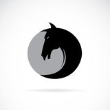Vector image of a horse's head Stock Photos