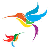 Vector image of an hummingbird Stock Images