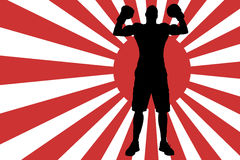Vector image of the Japanese flag. Stock Images