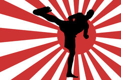 Vector image of the Japanese flag. Royalty Free Stock Photo