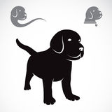 Vector image of an labrador puppies Royalty Free Stock Photos