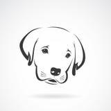 Vector image of an labrador puppy face Stock Photo