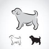 Vector image of an labrador puppy Stock Photo