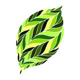 Vector image of a leaf in shades of green. Stock Photo