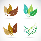 Vector image of leaves design Stock Photos