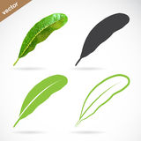 Vector image of leaves Royalty Free Stock Images
