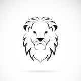 Vector image of an lion head Stock Image