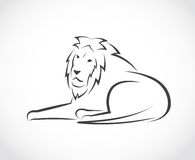 Vector image of an lion Royalty Free Stock Photo
