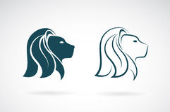 Vector image of an lions head design Royalty Free Stock Photography