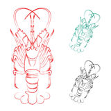 Vector image of an lobster Royalty Free Stock Image