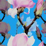 Vector image. Magnolia flowers and buds. Seamless patterns Abstract wallpaper with floral motifs. Flower composition. Use printed stock illustration