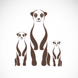 Vector image of an meerkats Royalty Free Stock Photo