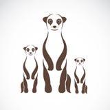Vector image of an meerkats Royalty Free Stock Photo
