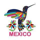 vector image of Mexican bird. Hummingbirds. Traditional Stock Photos