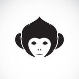 Vector image of an monkey head Royalty Free Stock Photos